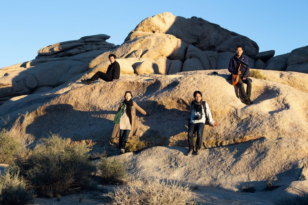 2015-11-08, Joshua Tree National Park